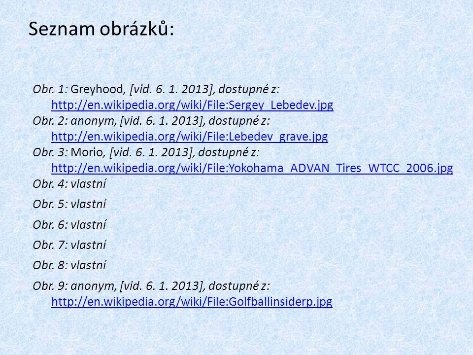 Seznam obrázků: Obr. 1: Greyhood, [vid. 6. 1. 2013], dostupné z: http://en.wikipedia.org/wiki/File:Sergey_Lebedev.jpg.